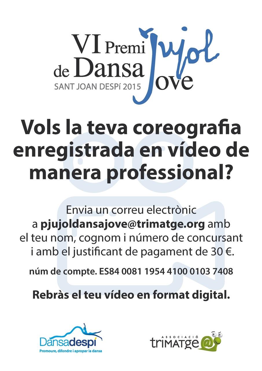 VI_PJDJ_videos_professionals